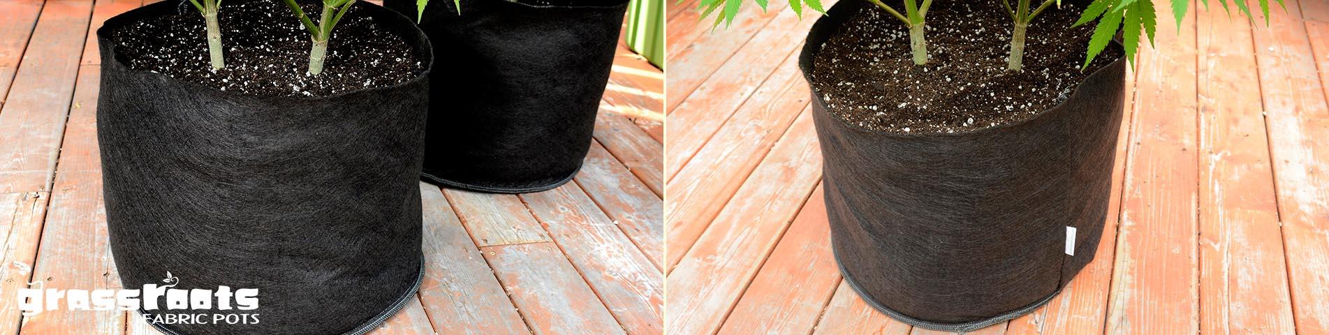 5 gallon grassroots fabric pots
