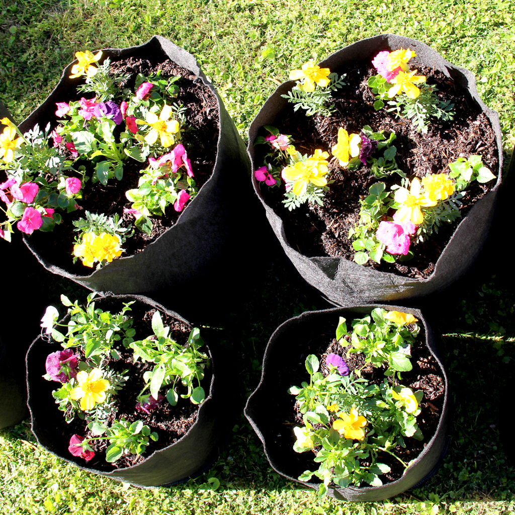 flowers in grassroots fabric pots