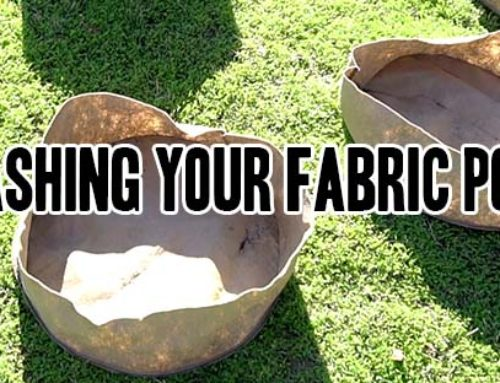 Washing your Grassroots Fabric Pots