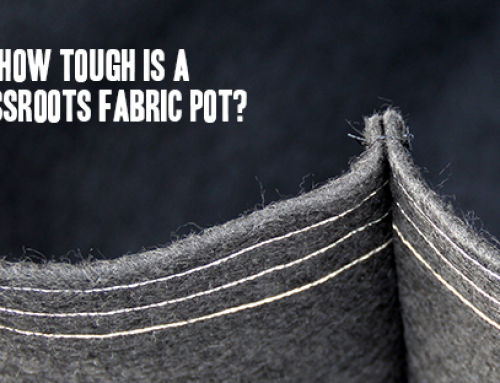How Tough is a Grassroots Fabric Pot?