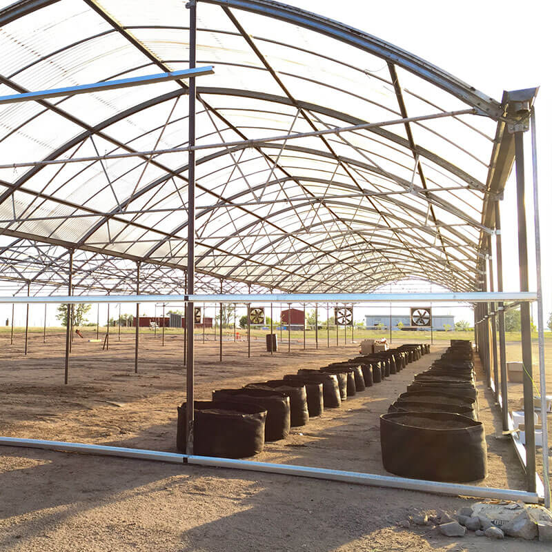 new greenhouse in progress with fabric pots